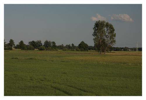 majkl polsko 2012 007